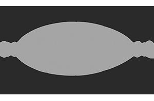 Lemiux Doors provider logo